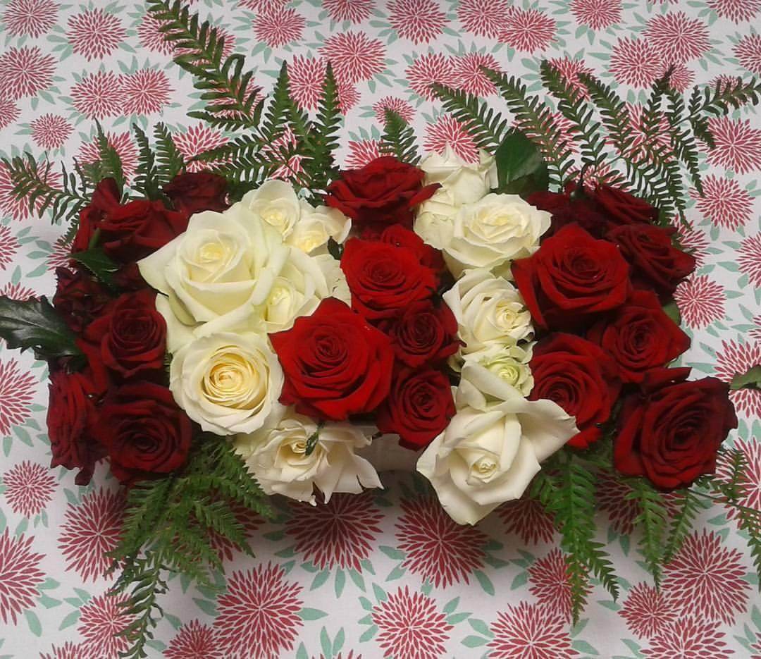 Vera Flowers (1)