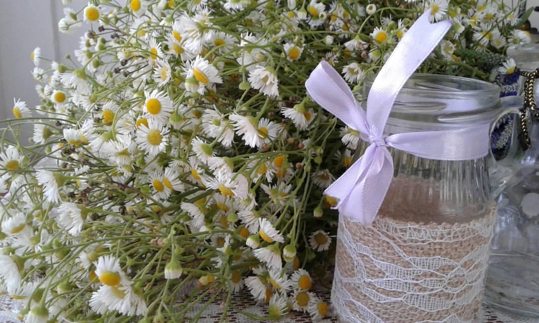 Vera Flowers (13)
