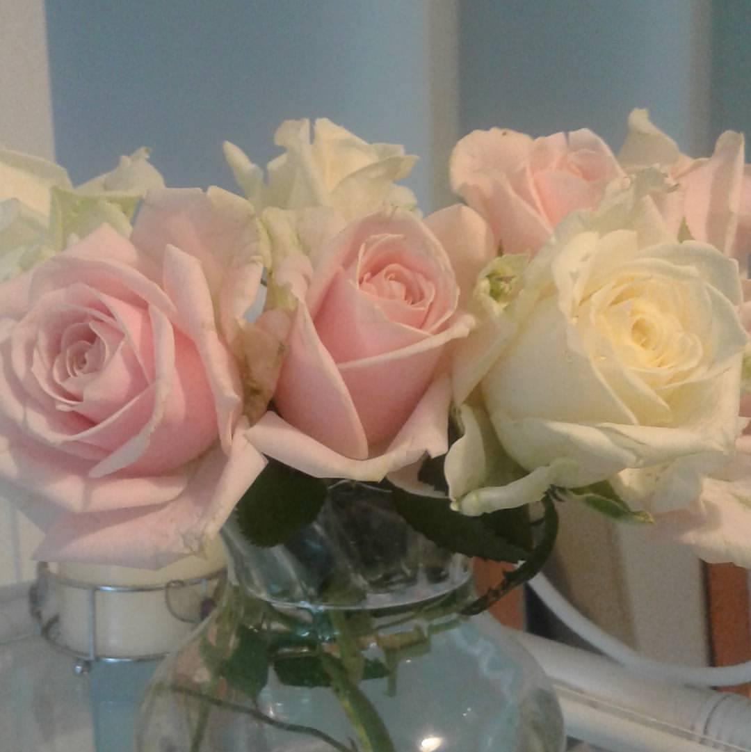 Vera Flowers (25)